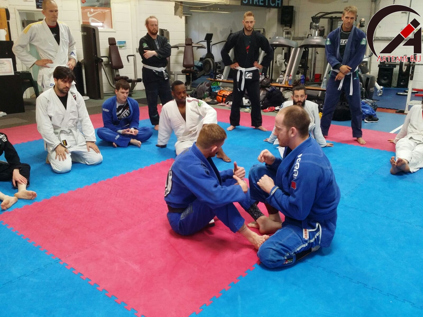 Grading Seminar with Kev Capel at Artemis BJJ Bristol Brazilian Jiu Jitsu